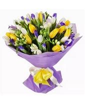 Букет: тюльпаны, ирисы, фрезия