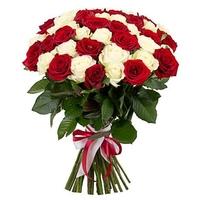 Классика 25 роз